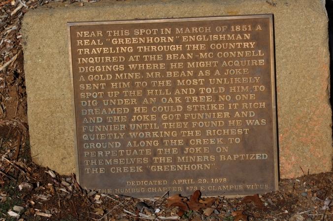 Greenhorn_story_2